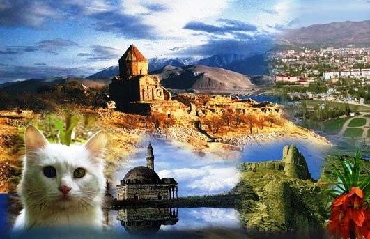 Van Gölü Express ile Doğu Anadolu Gezisi
