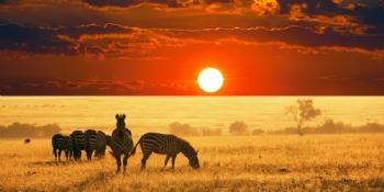 Afrika Turları